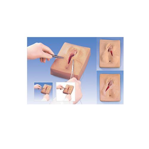 德国3B Scientific®会阴侧切缝合模拟装置,一组3件