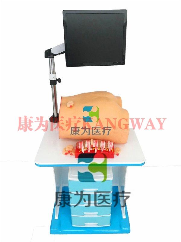 """""""康为医疗""""椎间孔镜手术模拟训练系统"""