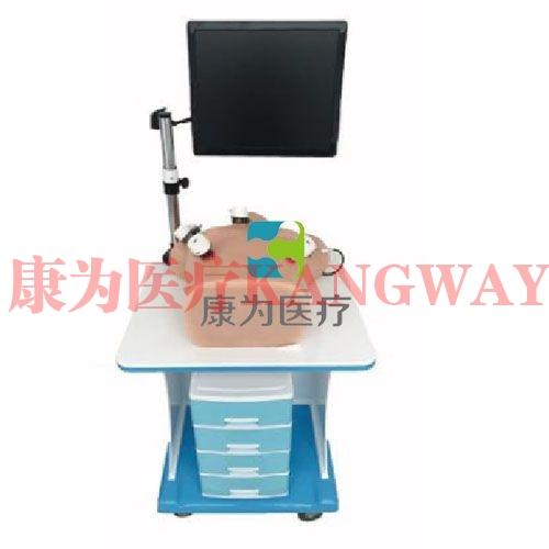 """""""康为医疗""""胸腔镜模拟训练器"""