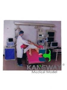 """betvlctor26伟德医疗""产妇-高仿真标准化病人实训系统 V1.0"