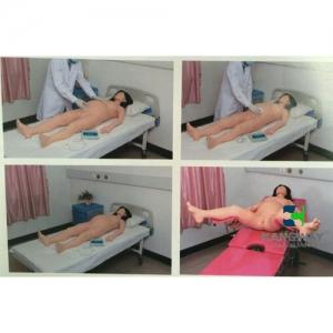 """betvlctor26伟德医疗""孕妇产科检查-高仿真模拟训练系统 V1.0"