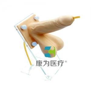 """""""康为医疗""""男性避孕套练习万博app最新版,高级男性避孕操作万博app最新版"""