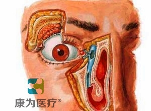"""betvlctor26伟德医疗""高级鼻泪管通液训练BETVICTOR伟德网址"