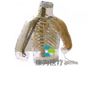 """betvlctor26伟德医疗""高级上臂肌肉注射及对比BETVICTOR伟德网址(带检测警示系统)"