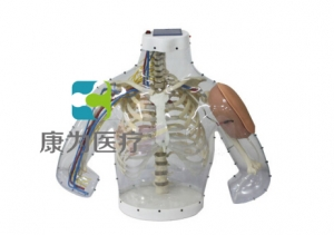 """betvlctor26伟德医疗""高级上臂肌内注射操作及对比BETVICTOR伟德网址"