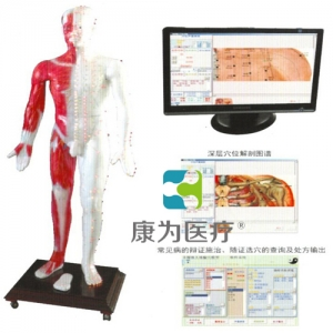 """""""康为医疗""""光电感应多媒体人体针灸穴位发光万博app最新版"""