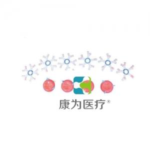"""""""康为医疗""""ABO血型演示万博app最新版"""
