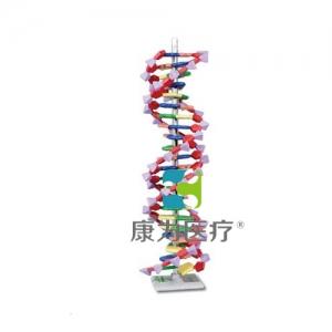 """""""康为医疗""""DNA结构万博app最新版"""