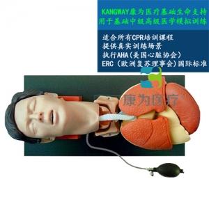 """""""康为医疗""""高级气管插管训练仿真万博app最新版"""