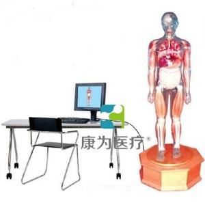 """""""betvlctor26伟德医疗""""多媒体解剖学教学综合模拟示教人"""