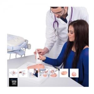 德国3B Scientific®SONOtrain™ 带囊肿的超声检查乳房万博app最新版