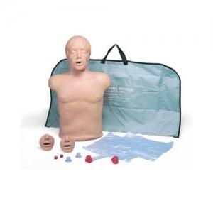 德国3B Scientific®心肺复苏(CPR)躯干万博app最新版