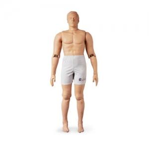 德国3B Scientific®救助万博app最新版,182cm/75kg