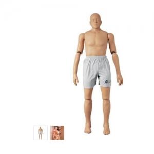德国3B Scientific®救助万博app最新版,167cm/48kg