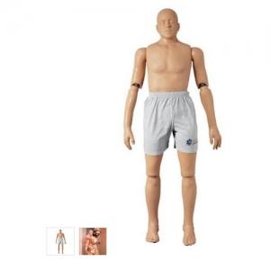 德国3B Scientific®救助万博app最新版,167cm/25kg