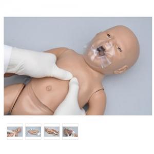 德国3B Scientific®新生儿CPR和综合护理BETVICTOR伟德网址,带控制器,增加胫骨穿刺和静脉通路