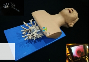 呼吸介入-纤支镜介入模拟器,高仿真模拟支气管镜万博app最新版