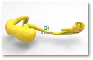 胃肠内镜介入培训万博app最新版,胃肠内镜介入模拟系统