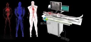 全身人体动静脉血管BETVICTOR伟德网址,动静脉血管及骨骼模拟系统