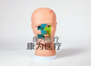 """""""康为医疗"""" 脑室引流护理模型, 脑室引流术后护理操作模型,侧脑室穿刺引流术仿真训练模型。"""