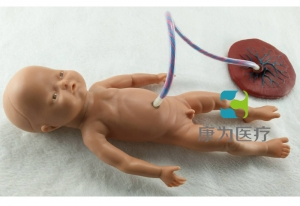 """""""康为医疗""""高级新生儿脐带护理万博app最新版,脐带护理模拟人"""