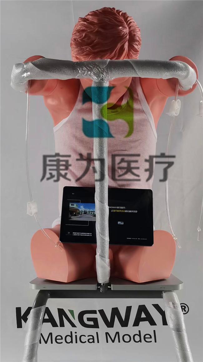 胸膜腔穿刺模拟训练系统_副本.jpg