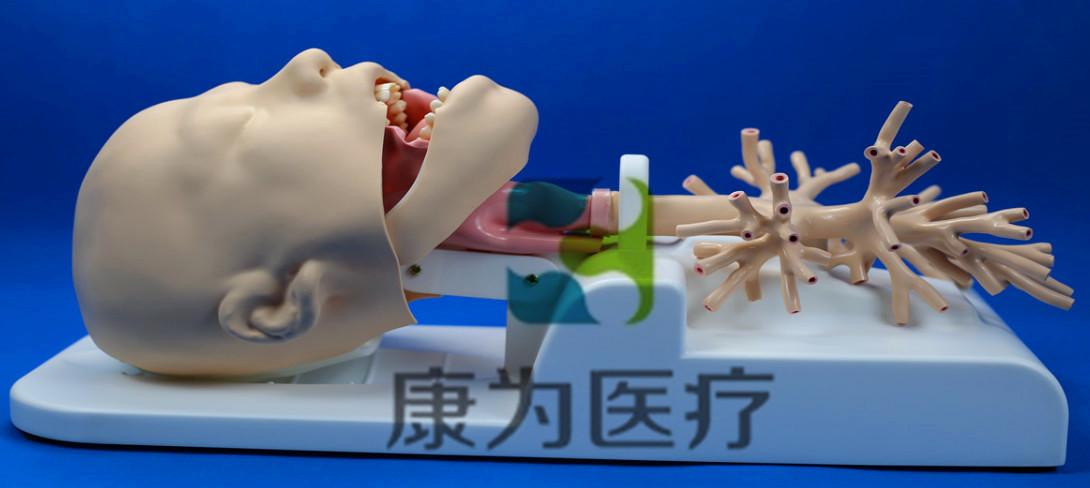 呼吸内镜介入培训模拟器