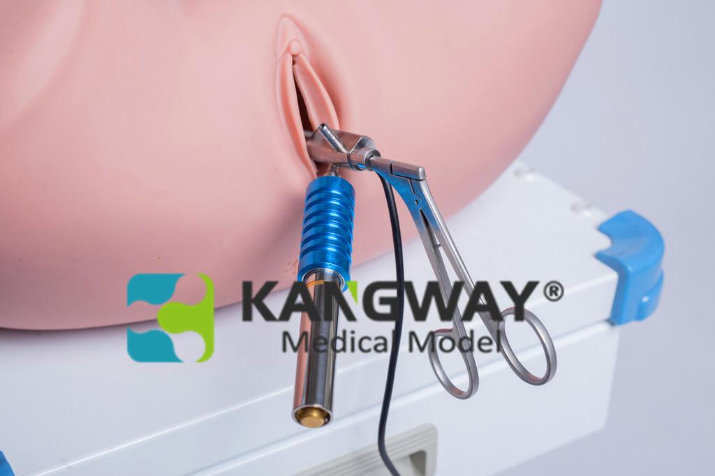 宫腔镜手术模拟训练系统